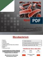 Clase 10. Mycobacterium.pdf