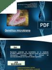 Clase 5. Genética Microbiana