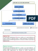 metodologiadefitiva