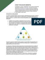 Proceso y Evaluacion Ambiental