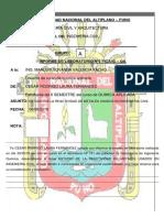 caratula informe quimicaBG.docx