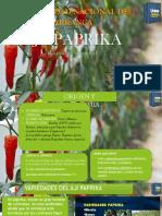 Producción de La Paprika Lo