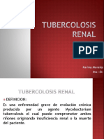 Tubercolosis Renal