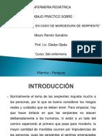 Mordedura de serpiente - Presentacion.pptx