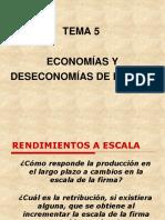 Tema 5 Economias de Escala