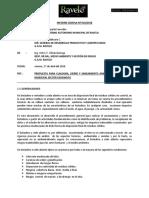 INFORME Nº10 INFORME PROPUESTA DE CIERRE DEL BOTADERO.docx