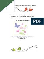 Proiectteograd2 Insp 2
