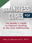 Boundless_Cures Micozzi.pdf