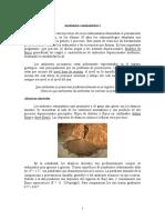 alluvialfanslecture.pdf