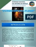 FUNDICION DEL PLOMO.pptx
