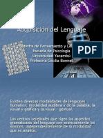49272238-Adquisicion-del-Lenguaje.ppt