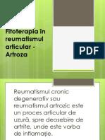 Fitoterapia În Reumatismele Articulare - Artroze