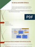diapositiva toxicologia