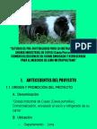 Proyecto Cuy