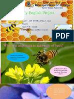 Pro My English Project