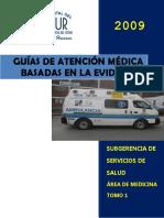 Guías de Atención Consolidado Versión Office 97-2003