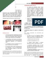 8. Nefritis lupica.pdf