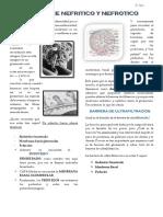 9. DR. ZAINS NEFRITICO Y NEFROTICOx.pdf