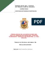 monografiafinal_sidar