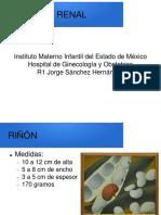 presentación anatomia renal, ureteral, vesical.pptx