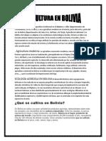 En Bolivia Se Practica Una Agricultura Tradicional en El Altiplano y Valles