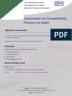 Licence Prof en Comp-fin Et Audit
