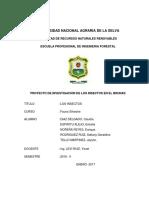 G5 Identificacion de Los Insectos en El Brunas