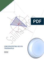 Informe-Salina.docx