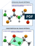 Estructura de Las Proteinas