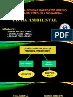 Presentación1 GESTION