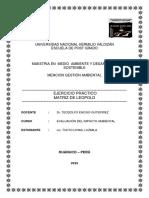 292682925-Matriz-Leopold-Ejercicio-Practico-1.docx