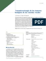 Fonomicrocirugía de los tumores benignos de las cuerdas vocales