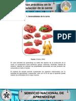 MF_AA1.pdf