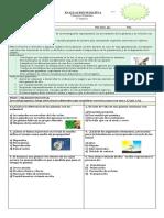 EVALUACION N°2 ESCALA DE APRECIACION CREACION DE PAPELOGRAFO Y DISERTACION 6° A  CIENCIAS NATURALES
