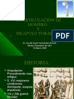 desarticulaciondehombroyescapulotoracica-141003111644-phpapp01.pdf