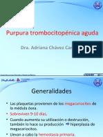 1-prpuratrombocitopnica-120401110549-phpapp01.pdf