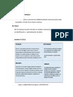 Tecnología Flexografica Plan de Marketing _ Version 2