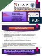 Expo Farmacos Noradrenalina