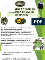 Animales Colombia