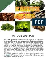 acidos-grasos.pdf