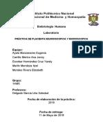 PLACENTA.pdf