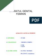 Aparatul Genital Feminin 2018