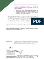 Portfolio Cv 5
