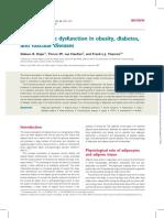 Adipose Tissue Dysfunction