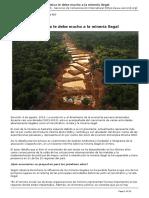 evolucion_economica_le_debe_mucho_a_la_mineria_ilegal_-_2016-08-08.pdf