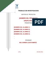 ESTRUCTURA_DEL_TRABAJO_FINAL_GP.pdf