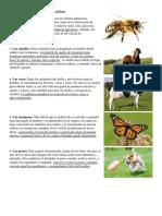 Animales útiles y perjudiciales.docx