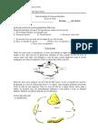 Guía de Aprendizaje_ciclo de Vida