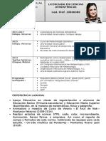 Curriculum_Katherynne Gasperin Castelan.pdf