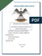 Responsabilidad Ecologia Con Metodologia 1 (1)